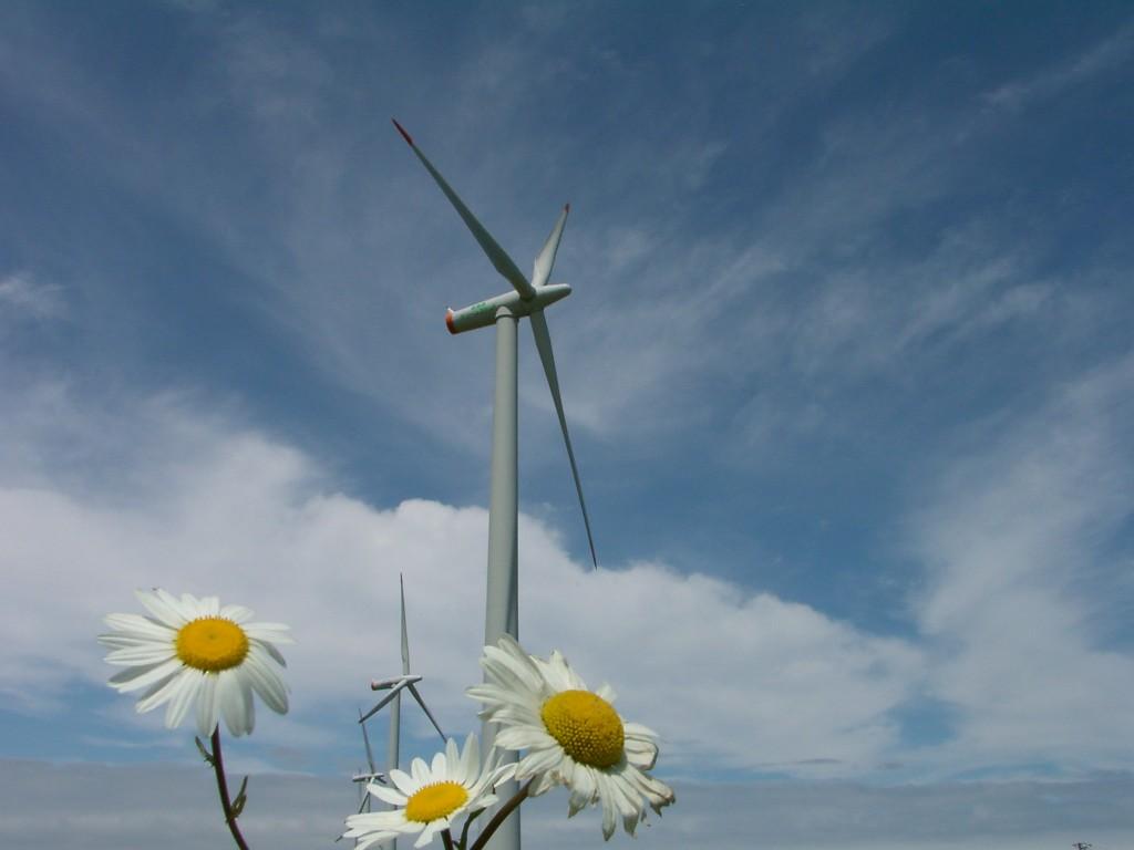 国内初の市民風車「はまかぜ」ちゃん